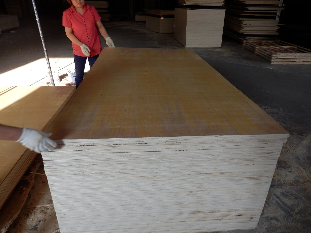 Plywood prices in india birch timber logs pvc edging for Birch wood cost