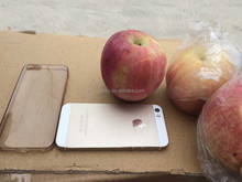 Best price China Fuji apple wholesale
