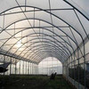 High Quality 10-year Warranty ISO Certification 100%Bayer Marolon polycarbonate plastic for greenhouses sheet with UV Protection