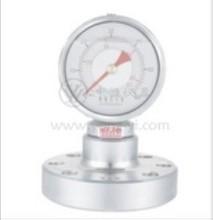 Shock-resistant Pressure Gauges Flanged Pressure Gauge