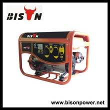BISON(CHINA) Factory Price and Hot Sale DC Generator BS5500