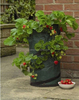 Strawberry Planting Bag, Potato Growing Bag For Planter-PT03