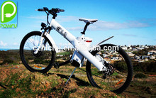Seagull 26'' chinese road electric bike pocket wholesale