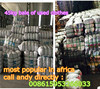 used clothes in bales for africa/used second hand clothing from dubai