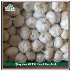 China Natural Fresh Garlic