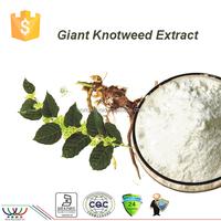 free sample HACCP KOSHER FDA manufacturer long term supplement giant knotweed extract bulk resveratrol