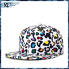OEM fashion high quality sports custom cheap Snapback hats with high quality