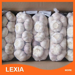 High quality Wholesale price fresh natural garlic