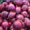 /product-gs/2015-chinese-fresh-onion-60214966407.html