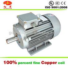 Good power motore elettrico 12v 1000w