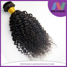 free sample thick ends unprocessed brazilian virgin hair hair human afro jerry curl hair