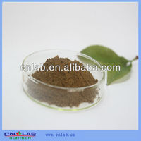 NSF GMP HALAL Certified Pure Natural Ginkgo Biloba Plant Extract/Ginkgo flavone Glycosides 24%/Lactones 6% HPLC