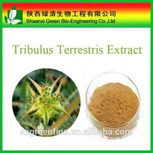 Natural Tribulus Terrestris Extract Tribulus Saponins