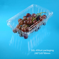 750g Disposable Plastic Packaging for Vegetable and Food