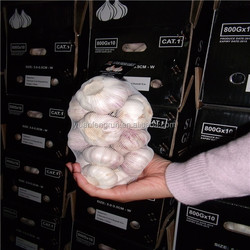 2014 45-50 50-55 55-60 fresh normal white garlic