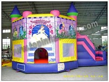 2012 commercial inflatable combo