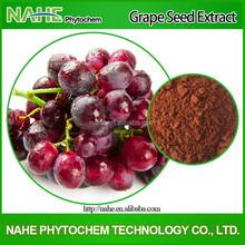 Anti-oxidant Grape Seed Extract, Grape Seed Extract Powder, 95% Proanthocyanidins