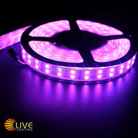 600 led strip 5050,120 led per meter strips