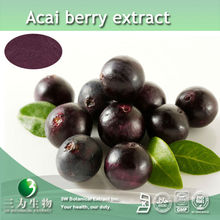 Pure Nautral Acai Berry Extract from GMP factory