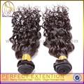 6a grau estilos de cabelo cabelo encaracolado curto amostras grátis produto de beleza