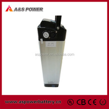 24V 10Ah silver fish style ebike battery pack vehicle