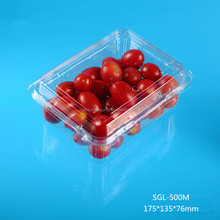 China Retail Disposable Packing Container Manufacturer Fruit Clamshell Blister Packaging