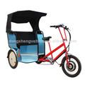 adulto triciclo trike