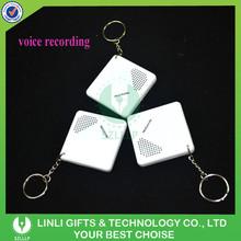 Promotion Custom Mini Keychain Voice Recorder For Gifts, Cheap Keychain Voice Recorder With Logo For Brand Advertising