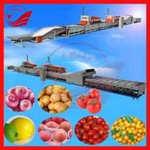 Fruit Farm Equipments Commercial Fruit Washing/Waxing/Grading Machine