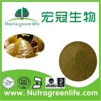 factory outlet Fucus Vesiculosus Extract