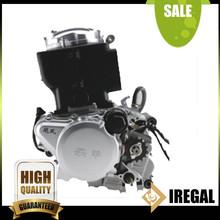Cargo Gas Auto Lifan Trike Tricycle Engine