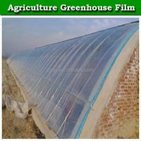 150 micron pe plastic transparent blue greenhouse film fastening for sale