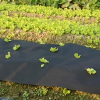 Made in China ventilate Eco Friendly circulation stimulation agriculture nonwoven fabric