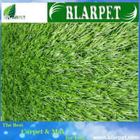 OEM most popular landscaping grass for dogs