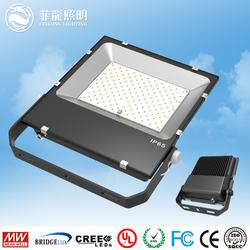 christmas lights projector Long Lifespan Bridgelux Chip 150w LED Flood Light driver