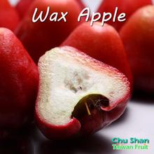 Taiwan Fresh Wax apple Fruit