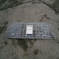high quality cat traps for sale