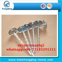 Widely use galvanized roofing nail / High quality coil roofing nail