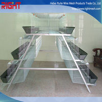 egg chicken cage/Poultry Shed Cage for layer chicken farm/quail cages