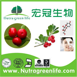 Alpha Arbutin/Skin Whitening Extract Alpha Arbutin 99%