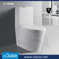 Big toilets bowl sanitario china siphonic dual flush two pc toilet