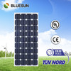 Bluesun Chinese factory direct supply energy saving mono100w small led solar light panel
