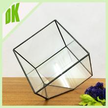 2015 New products indoor plant character charming glass reptile terrarium ++ festival celebrate mini handblown glass terrarium