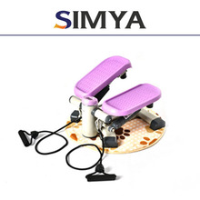 Swing stepper with DVD and manual/waist exercise machine