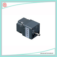6w`160w brushless DC motor
