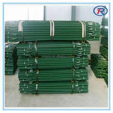 cheap price fence post /T post/Y post T fencing post made in china