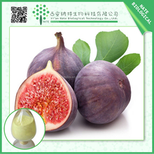 GMP Factory Supply Fig Extract /Fig Leaf Extract Powder 4:1