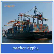 cargo ship freight services from China to USA ------terry