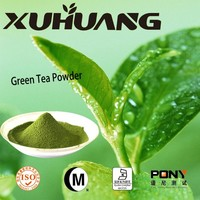 ISO Export High Quality green tea Extract and green tea powder