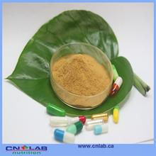 100% natural pure green coffee bean extract in thailand good supplier from China